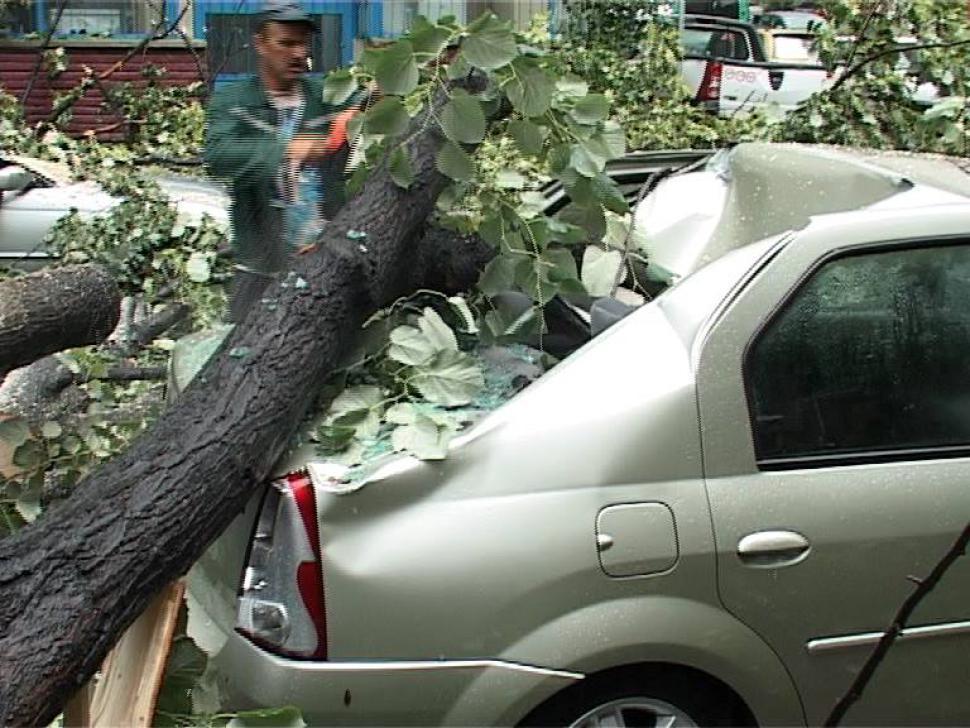 Gorj. O gravidă în luna a şaptea a ajuns la spital, după ce un copac a căzut peste maşina în care se afla