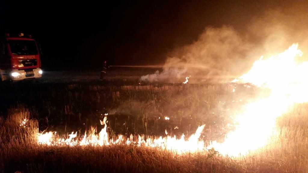 Animale, bunuri și produse agricole, arse într-un incendiu