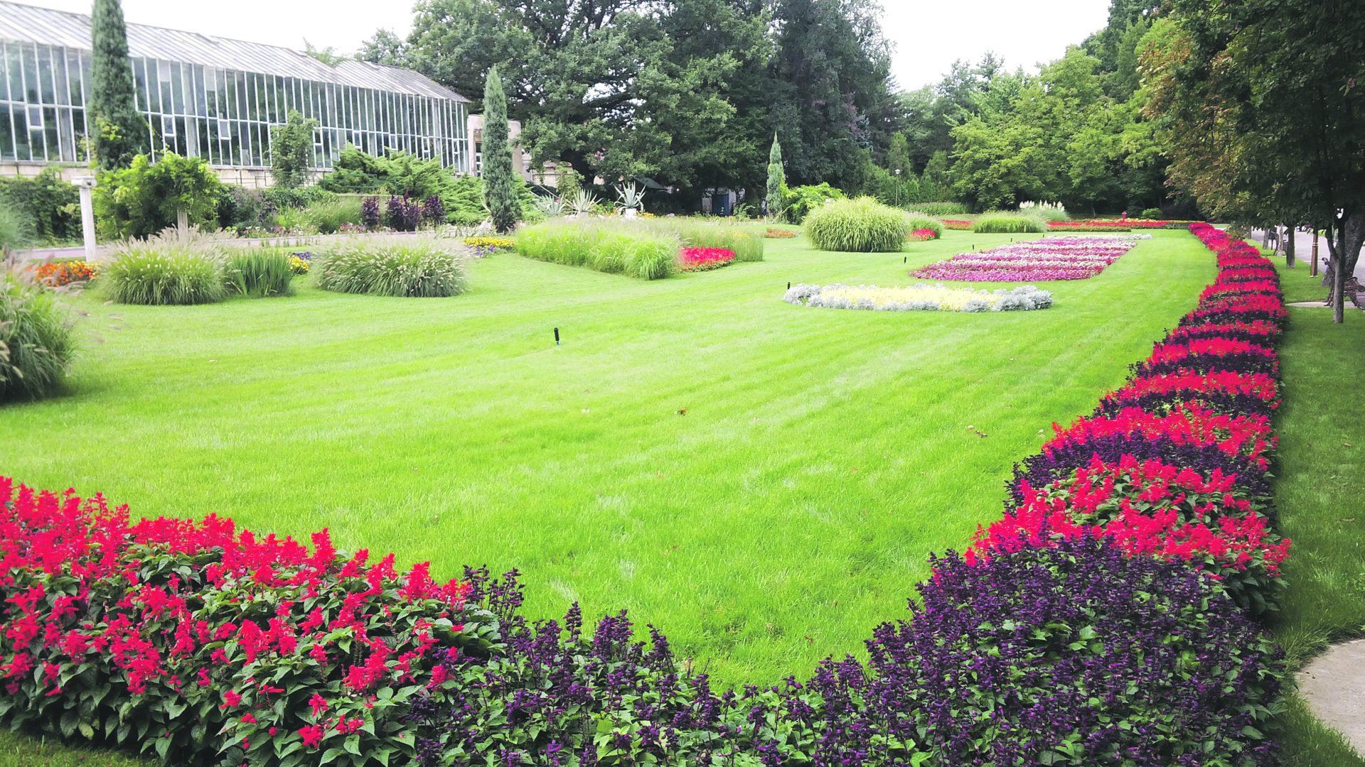 Grădina Botanică şi-a recăpătat demnitatea