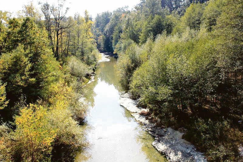 CJ Dolj înfiinţează un centru pentru protecţia naturii