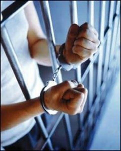 Mehedinți: Mandat de executare a pedepsei închisorii pus în aplicare