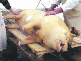 Testaţi carnea de porc înainte de consum!