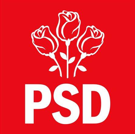 Liviu Dragnea, susţinut la conducere şi de PSD Vâlcea