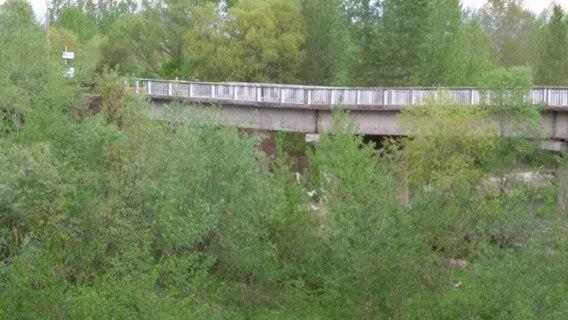 Podul de la Turcinești a primit finanțare