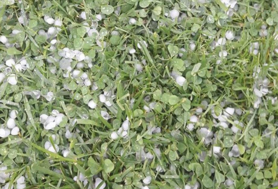 Olt: Circa 900 de hectare de culturi agricole din Sprâncenata şi Radomireşti, afectate de grindină