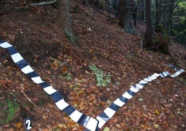 Un gorjean a murit strivit de un copac. Era la tăiat de lemne