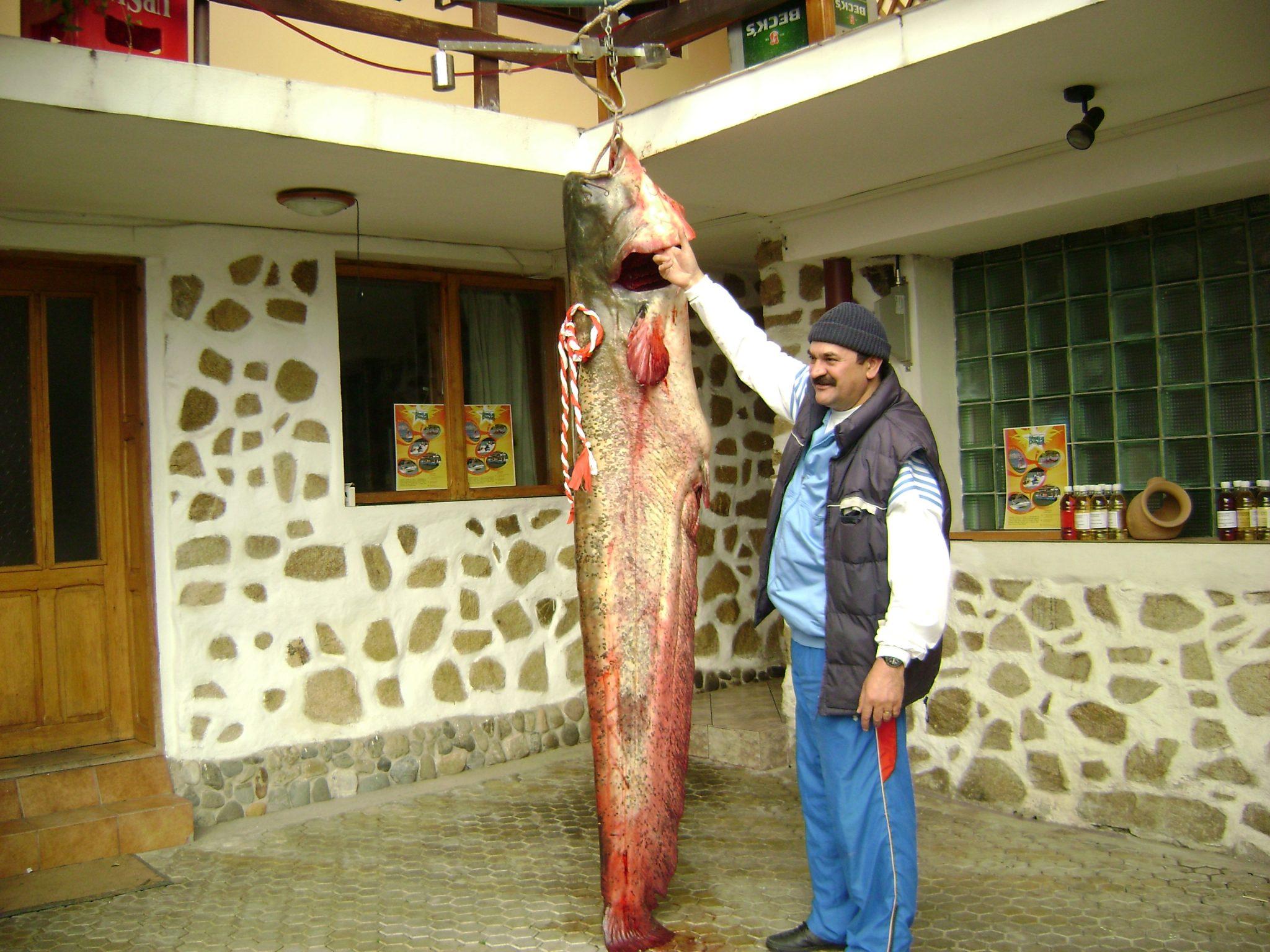 Împătimiții pescuitului se întâlnesc în Vâlcea