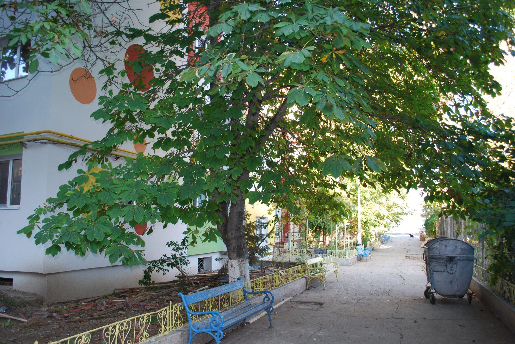 Loc de joacă la Creşa nr. 4 din Slatina. Primăria vrea să facă și parcare