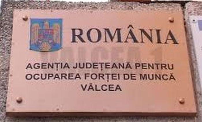 3,13 % – rata şomajului înregistrat în evidenţele AJOFM Vâlcea în luna noiembrie 2018