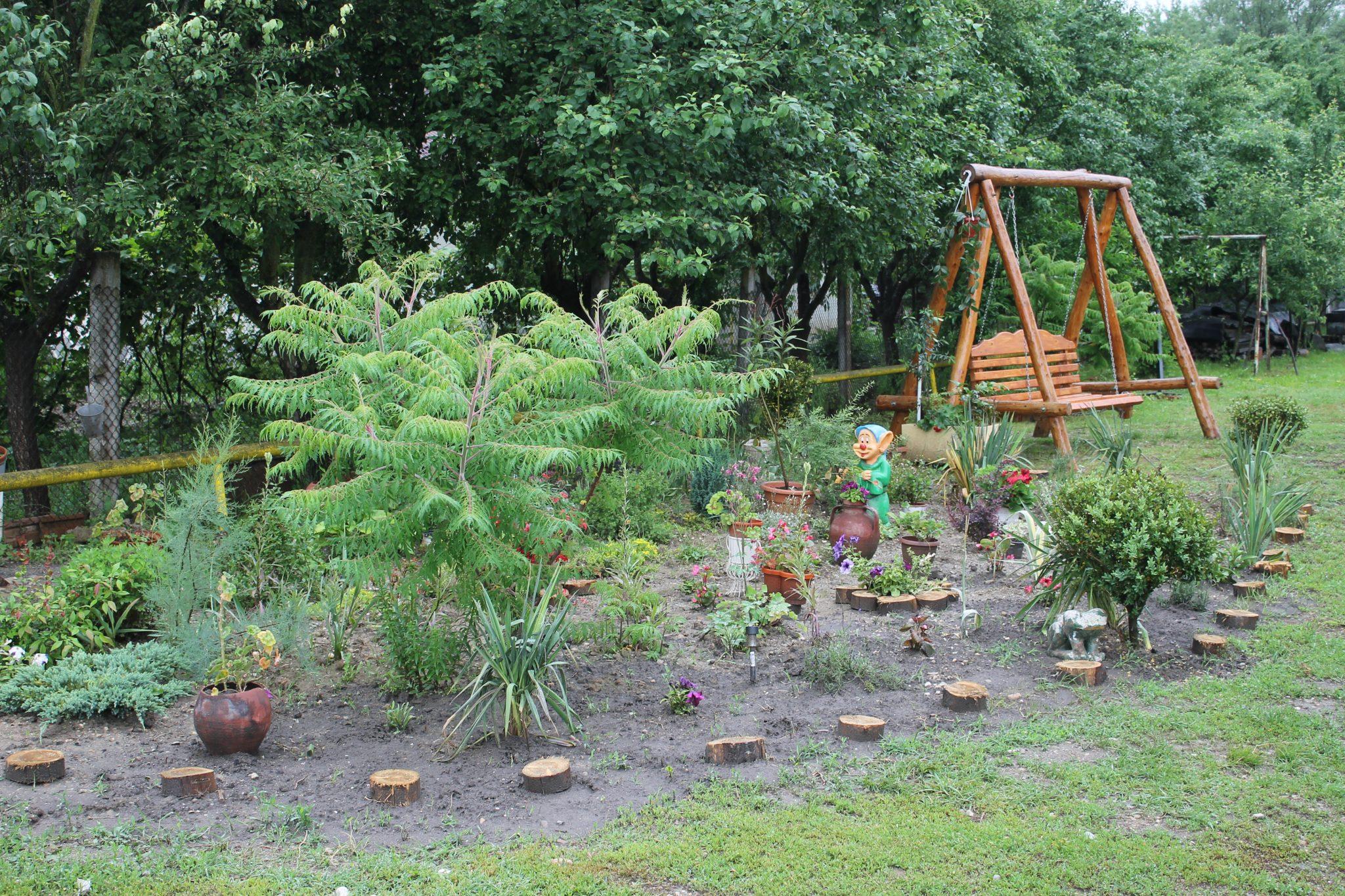 Votați cele mai frumoase grădini din Rovinari! Fotografiile le găsiți pe site-ul primăriei