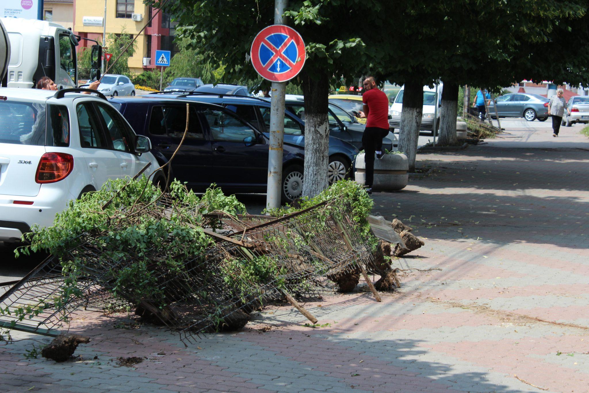 Slatina. Gardurile de la spațiile verzi de pe bulevardul A. I. Cuza, demontate