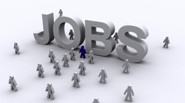 Locuri de muncă prin reţeaua EURES