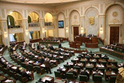 Senatul respinge organizarea alegerilor locale în 2 tururi