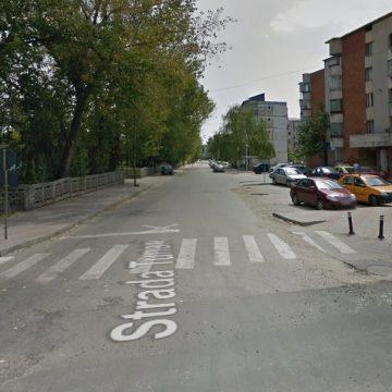 McDonald's la Slatina. Primăria a concesionat terenul pentru construcția restaurantului