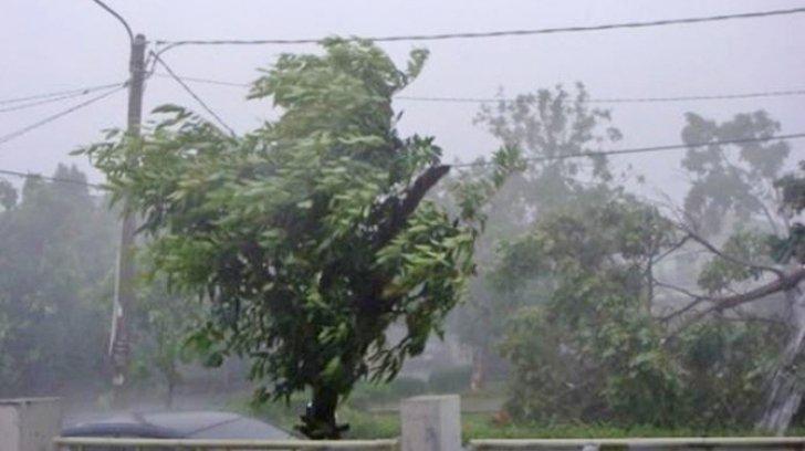 Cod galben de ploi torenţiale, vijelii şi grindină în Gorj, Vâlcea și Olt