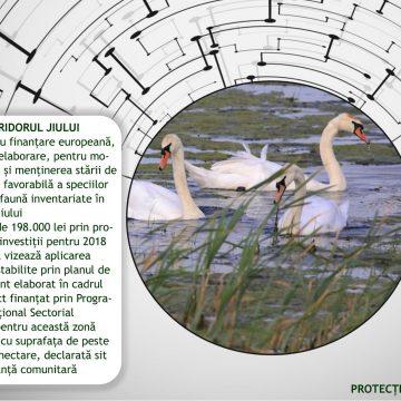 Săptămâna ariilor protejate. Coridorul Jiului, în planul de investiţii al CJ Dolj