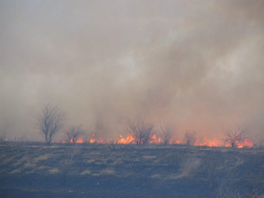 Mehedinți: Pompierii au viață grea, incendii de vegetație uscată cu duiumul