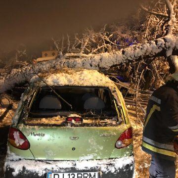 Iarnă în Craiova: Copaci rupţi, maşini avariate şi parcuri închise