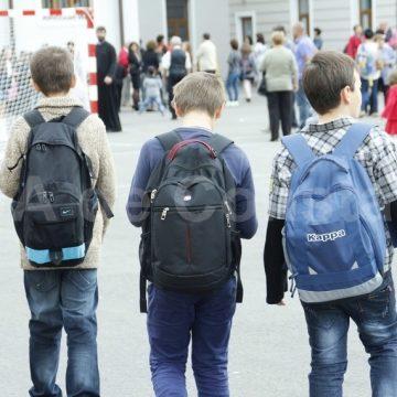 """Mehedinți: Și ,,trântorii"""" din PNL  păcălesc copiii cu mierea în școli"""