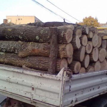 O remorcă plină cu lemne, confiscată de polițiștii gorjeni