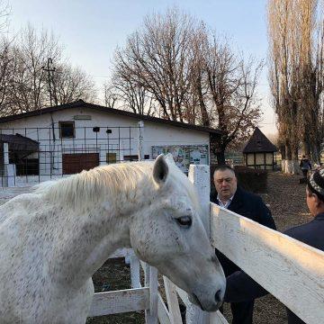 Hipodromul, în atenţia autorităţilor craiovene