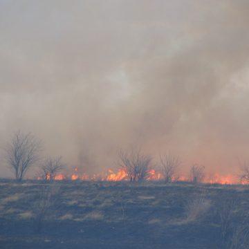 Mehedinți: Bărbat ars într-un incendiu de vegetație uscată