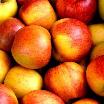 Elevii doljeni, la concursuri despre importanţa fructelor pe care nu le primesc
