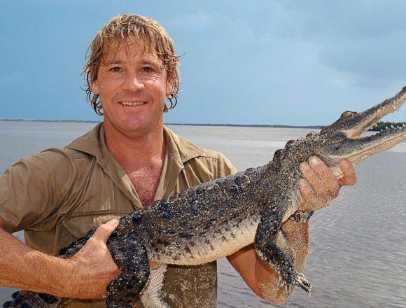 Steve Irwin omagiat de Google