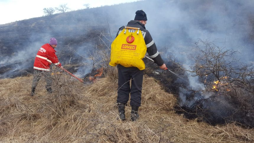 Mehedinți. Apel al pompierilor! Opriți arderile de vegetație!