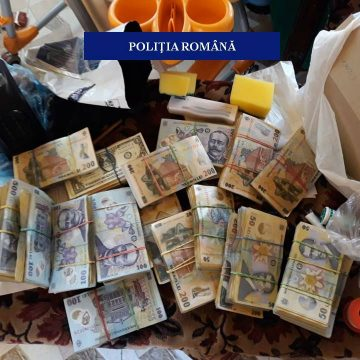 Vicele din Poiana Mare, acuzat de contrabandă, lăsat liber