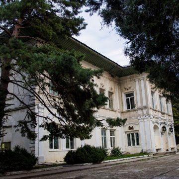 Castelul Cantacuzino-Ghica Deleni din Iaşi a fost scos la vânzare