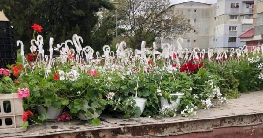 Primarul din Balş pune flori în calea liberalilor de la Bucureşti