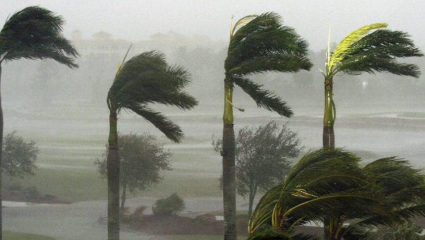 Furtunile fac ravagii în SUA