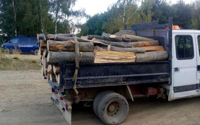Gorj. Trei autovehicule pline cu lemne, găsite fără acte în regulă