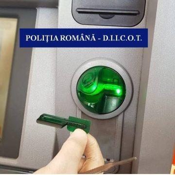 """Bulgari prinşi cu """"pisicuţa"""" în Severin"""