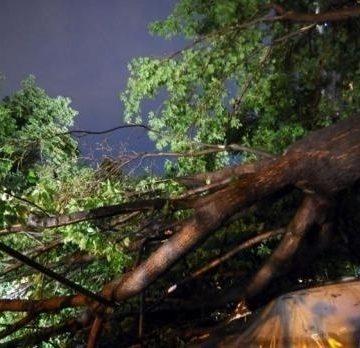 Furtuna a lăsat fără curent electric mai multe localități din Vâlcea