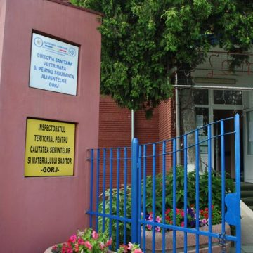 Inspectorii sanitar-veterinari din Gorj au dat amenzi de 22.400 de lei