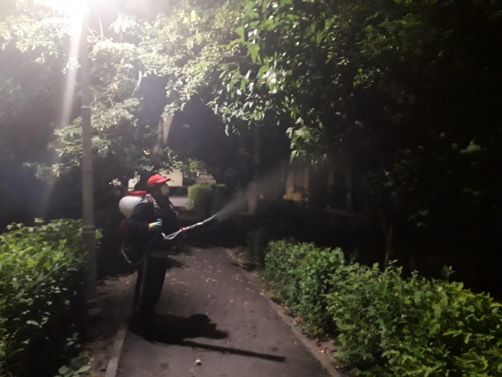 lupta cu țânțarii, intensificată