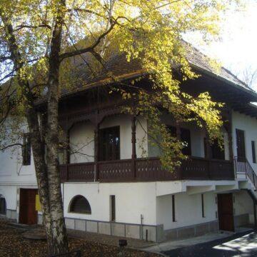 Muzeul Constantin Brâncuși, funcțional în februarie