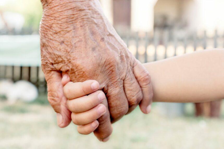 Senatul a aprobat proiectul prin care bunicii care îşi îngrijesc nepoţii primesc indemnizaţie